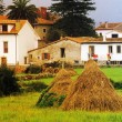 House in rural homestead. Hay. Green lawn yard. — Стоковая фотография