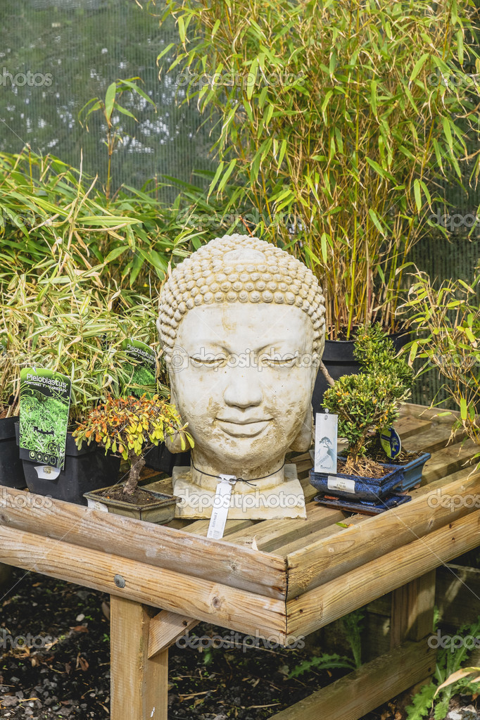 Busto de buda decoraci n jard n c sped de piedra foto de stock davidmartyn 27587741 - Buda jardin ...