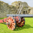 Cannon — Stock Photo #27593987