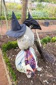 Elżbietańskiej ogrodem — Zdjęcie stockowe