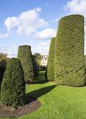 Old walled elizabethan garden — Stock Photo