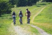 велосипедистов велосипеде вдоль пути саут-даунс — Стоковое фото