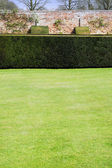 Lawn of a stately home — 图库照片