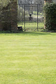 Lawn of a stately home — Stock Photo