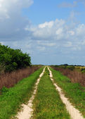 Path in countryside with nobody — Stock Photo