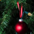 Matte red christmas ornament hanging on tree — Stock Photo