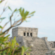 Mayan Temple named The Castle — ストック写真
