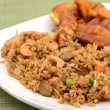 Fried rice on a plate with tofu — Stock Photo