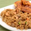 Stock Photo: Fried rice on plate with tofu