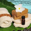 Tropical spa products next to ocean or pool — ストック写真