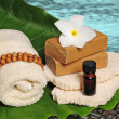 Foto Stock: Tropical spa products next to ocean or pool
