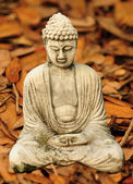 Autumn Buddha — Stock Photo