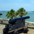 Постер, плакат: Canons and ocean at Castillo de San Marcos fort