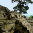 Stock Photo: Mayarchitecture and copruins in Honduras