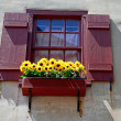 Window with flowers in renaissance city in europe — Stock Photo