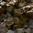 Nature background of rocks — Stock Photo