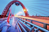 Picturesque bridge, observation deck, restaurant ellipsoid. Moscow. — Stock Photo
