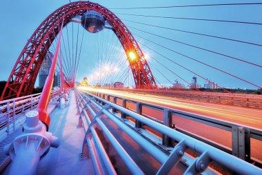 Picturesque bridge, observation deck, restaurant ellipsoid. Moscow.