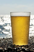 Plastic cup of beer standing on the sand by the sea. — Stock Photo