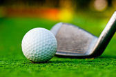 Golf ball on the field. — Stock Photo