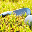 Golf ball in the grass, near a putter. — Stock Photo