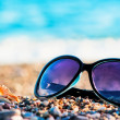 Stock Photo: Sunglasses and shells lie on shingle beach sea