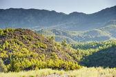Verdes colinas de las montañas en el fondo. turquía. — Foto de Stock