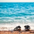 Beach shoes at the edge of the sea on the sandy beach. - Stock Photo