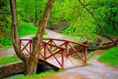 Wooden bridge in green leafy park across the rivulet — Stock Photo