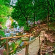 Wooden bridge at the waterfall Jur-Jur. Ukraine. Crimea. — Stock Photo