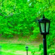 Street lamp in the old style, in the park — Stock Photo