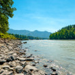 Rocky shore of a mountain river Katun. Altai Mountains, Russia. — Stock Photo