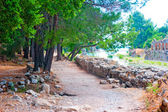 Guided trail in Ancient Olympos, Turkey — Foto Stock