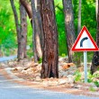Turn sign on the side of the forest highway — Stockfoto