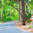 Road in the woods and the sign of rotation — Stock Photo