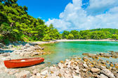 Rocky shore, the boat and the beautiful landscape of pine — Stock Photo