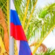 Russian flag on a background of palm trees — Stock Photo