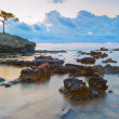 Beautiful morning landscape marine reef — Stock Photo