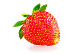 Ripe strawberries on a white background with a green tail — Stock Photo