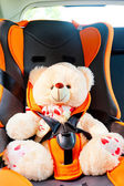 Bear strapped in a child seat in the car — Stock Photo