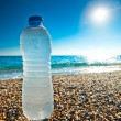 Bottle of cold fresh water on the pebble beach — Foto Stock