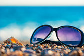 Sunglasses and shells on the beach — Stock Photo