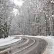 Stock Photo: Turn winter road in the forest zone