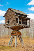 Wooden house on poles in the field — Stock Photo