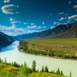 High mountains and lush meadows of Altai — Stock Photo #46126731