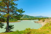 Turbid water of the mountain river Katun in Altay edge — Stock Photo