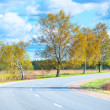 Turn highway in a rural location in summer — Stock Photo #47262061