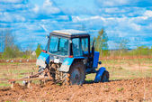 Training field for sowing wheat — Stock Photo