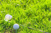 Green lawn and props golf — Stock Photo