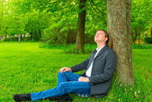 Businessman in the park looking up at a tree — Stock Photo
